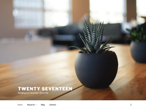 TwentySeventeen_screenshot